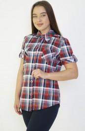 Рубашка-блуза на клепках М-119 (44-62)