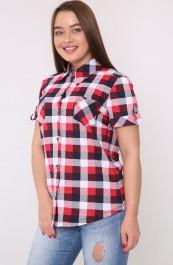 Рубашка-блуза М-119 (42-60)